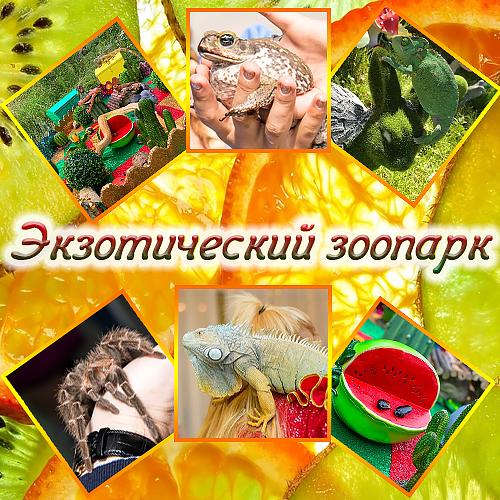 otdyh-s-detmi-v-moskve